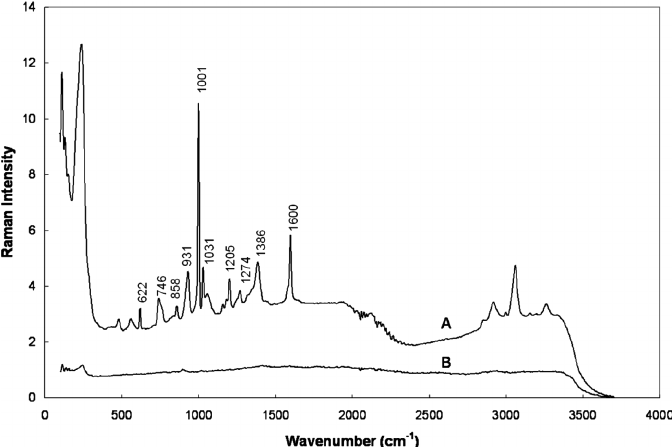 Gallery Of Sers Spectrum Of On The Silver Surface Prepared