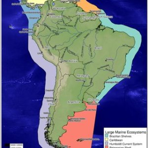 Map of South America defining the five subregions as analyzed in     Map of South America defining the five subregions as analyzed in this  paper  Tropical East