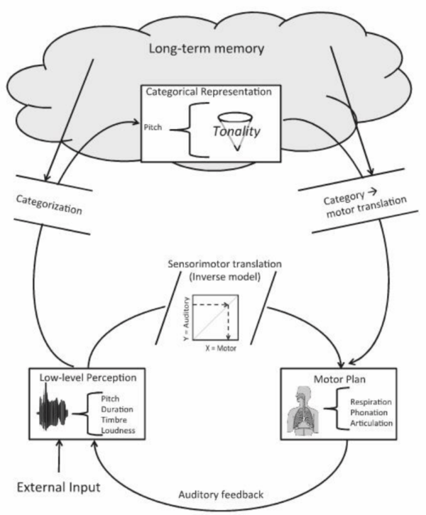 The functional architecture underlying the mechanics of ...