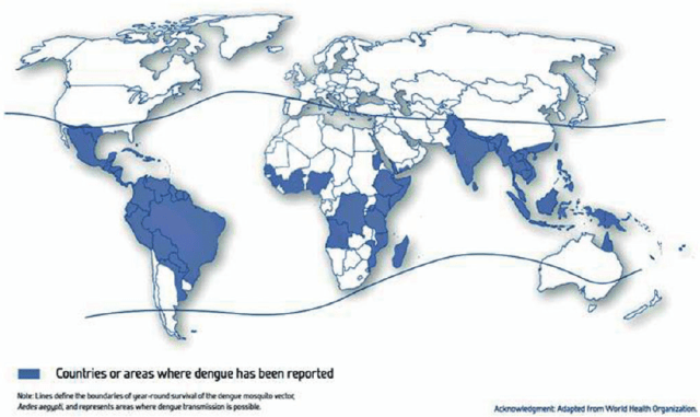 Countries or areas where dengue has been reported.