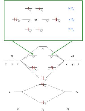 Molecular orbital diagram for oxygen The occupation of the antibonding | Download Scientific