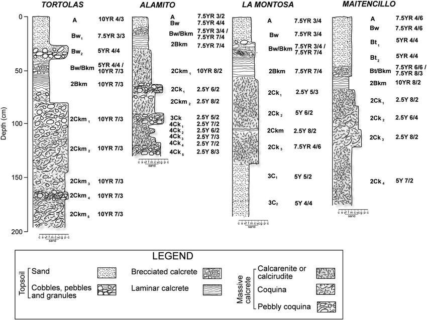 Profile Of Soil Horizons Diagram