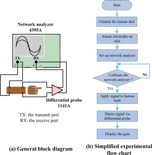 Invivo IBC channel gain experiment: (a) General block diagram and (b)