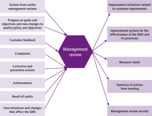 Schematic of management review process   Download