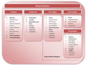 Natural disaster types 11 | Download Scientific Diagram