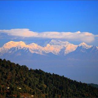 Senchal Wildlife Sanctuary at Chatakpur. | Download ...