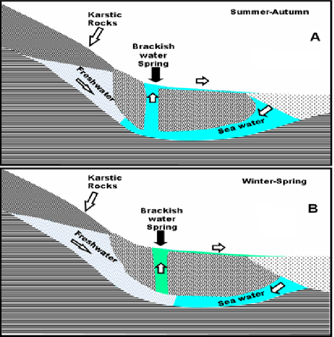 Some human activities can produce brackish water, mostly certain civil engineering projects such as dikes and the flooding of. Schematic Representation Of The Hydraulic Model Of The Brackish Water Download Scientific Diagram