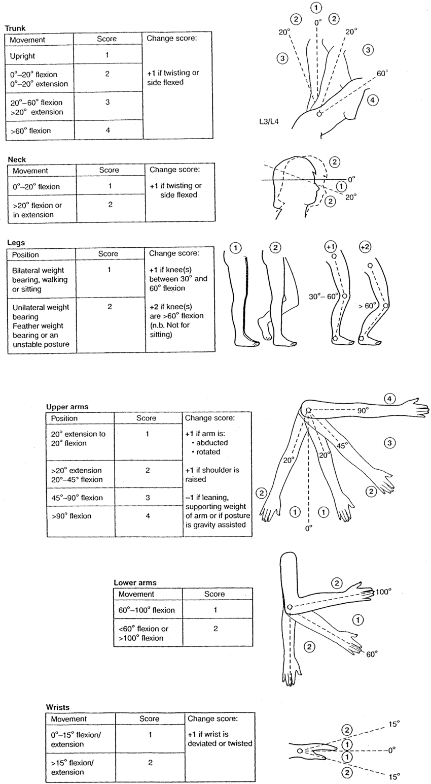 Group A And B Body Part Diagrams