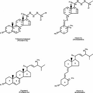 Chemical structures of vitamin D 2 and vitamin D 3 and ...