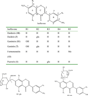 Chemical structures of the standard isoflavones in kudzu