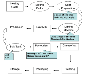 HACCP flow diagram of milking and processingprocedures