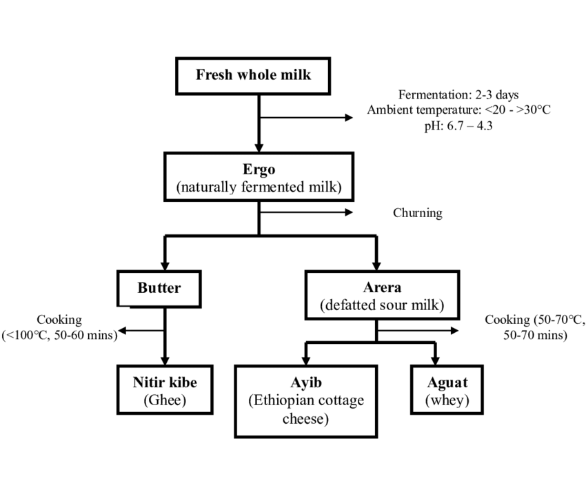 Flow diagram of smallholder milk processing in the