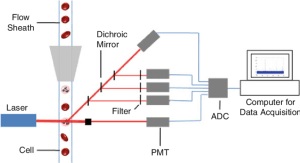 Schematic diagram of a standard ex vivo flow cytometer | Download Scientific Diagram