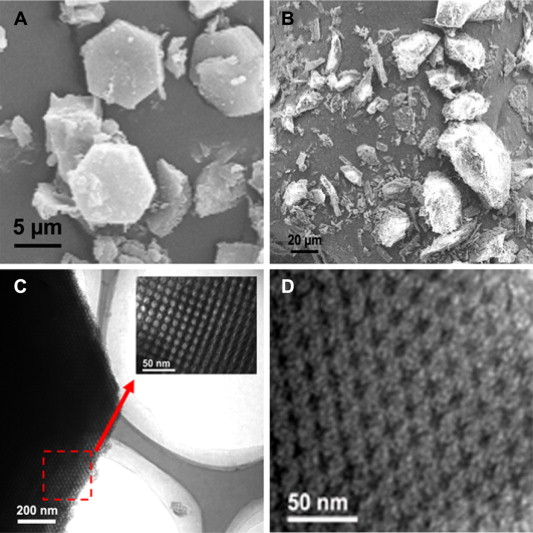 SEM images of  A  MC and  B  CEL  TEM images of  C  MC and  D  MCS     SEM images of  A  MC and  B  CEL  TEM images of