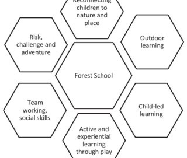 Situating Forest School Among Contemporary Movements In Education And Child Development Area