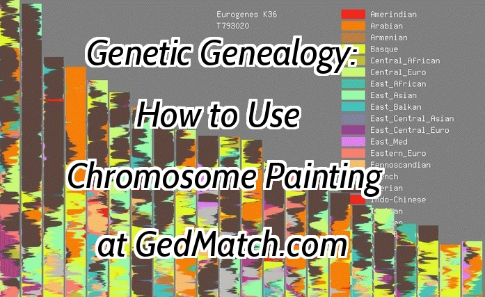 Fun with GEDMatch Chromosome Mapping