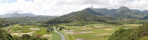 my ancestors settled in kilauea hanelei kauai hawaii