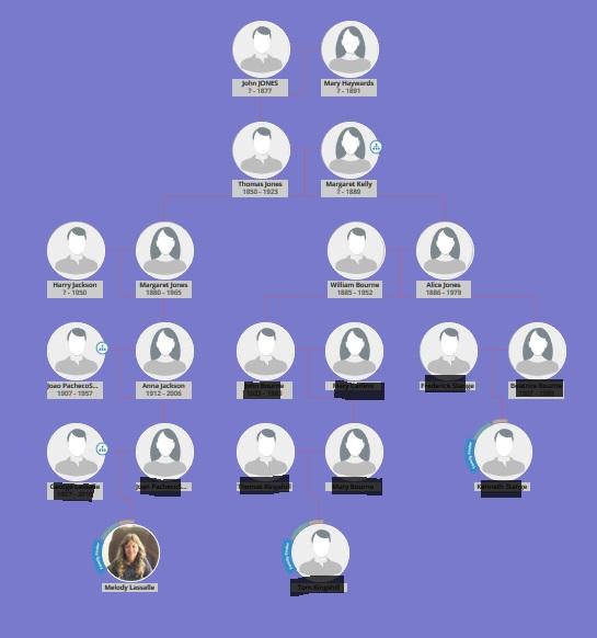 ftdna family tree utility