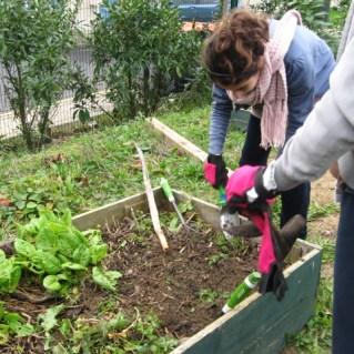 2011-clg-club-jardin-reprise02
