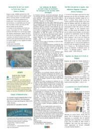 Moleriae Bulletin d'information janvier 2013