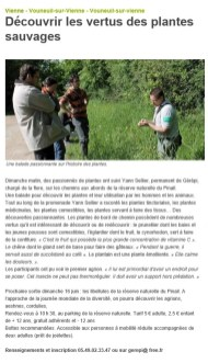 Sortie nature plantes comestibles et médicinales 2013, Nouvelle République