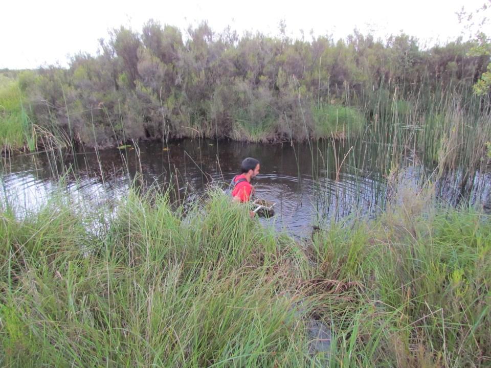 Frédéric Labat effectuant les relevés d'eau sur la Réserve