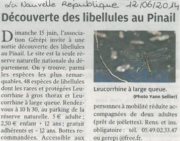 Sortie nature libellules 2014, Nouvelle République