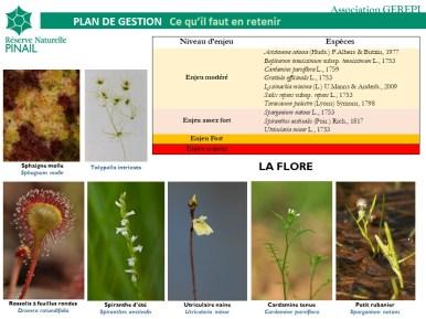 Responsabilités de conservation de la réserve du Pinail pour la flore