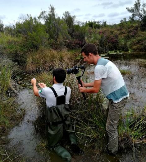 Tournage de suivi scientifique pour partager la vie de la réserve grâce à l'interface numérique du sentier
