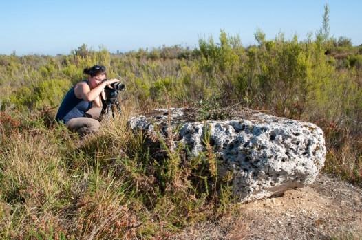 Tournage sur l'histoire du Pinail autour des dernières pierres meulières du site