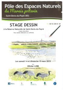 Stage dessin naturaliste 2015
