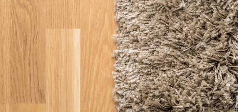 carpet vs. hard floors