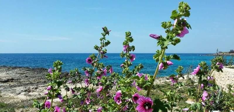 12 Casa Vacanze a Taranto sul mare in Puglia - Salento
