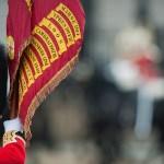Irish Guard Veterans