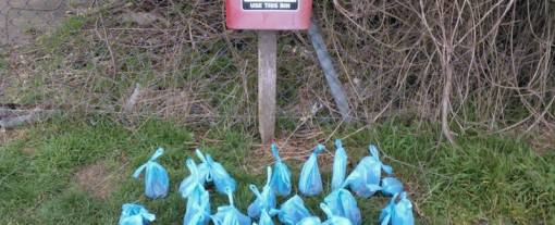 45 bags of poo collected by Cllr Sharon Morris!