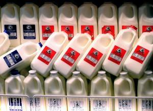 El reciclaje de envases de leche para fabricar nuevas botellas es una víctima colateral de la caída del precio del petróleo