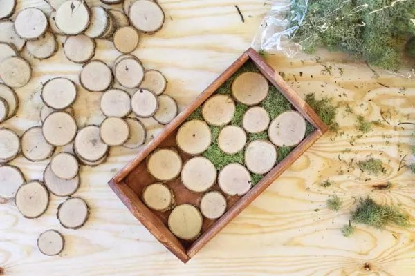 adding wood slices and moss to a wood tray