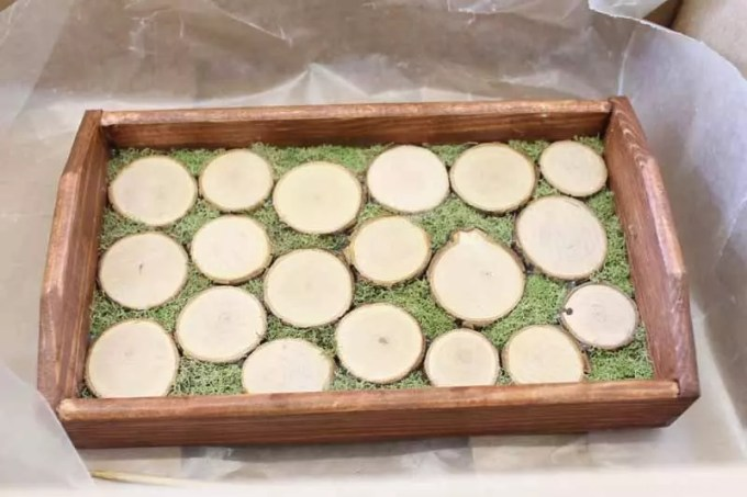 preparing wood slices and tray for resin