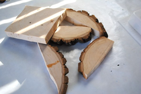 five cuts of wood on a table