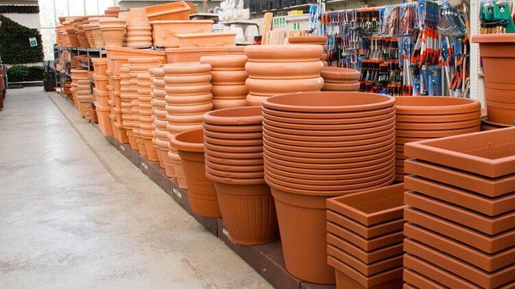 forma vasi piante