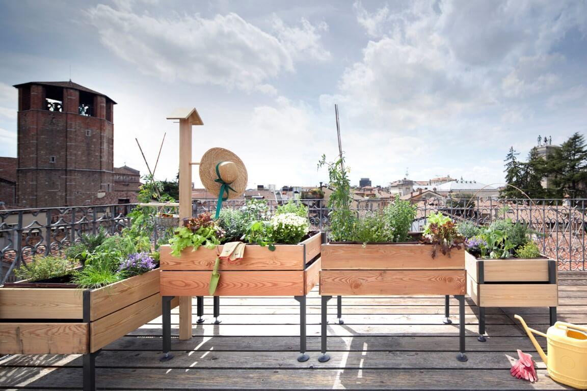 Come scegliere i migliori vasi per piante e fiori o per l'orto?