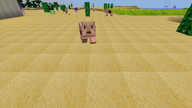 Minecraft-Special-Resource-Pack-8