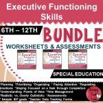 exexecutive-functioning-skills