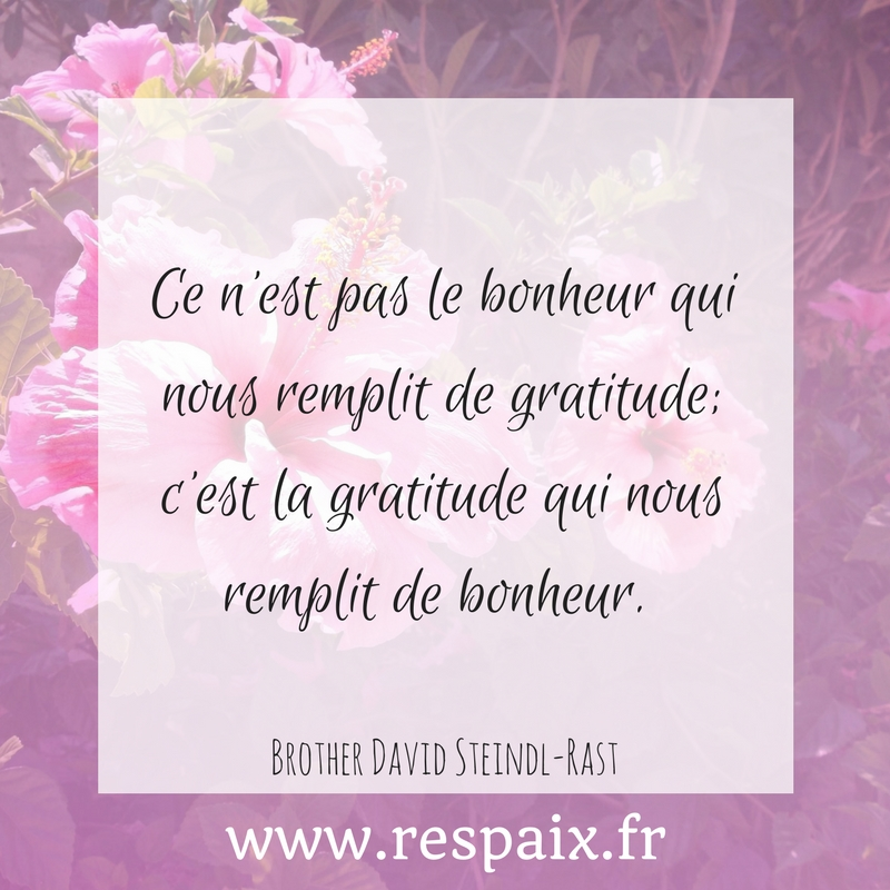 Découvrez le pouvoir de la gratitude : une pratique simple et efficace pour être heureux au quotidien.