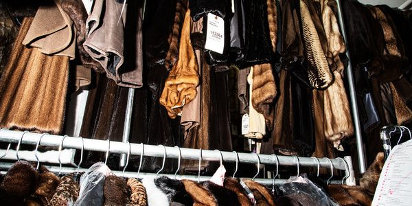 History made as California fur ban becomes law