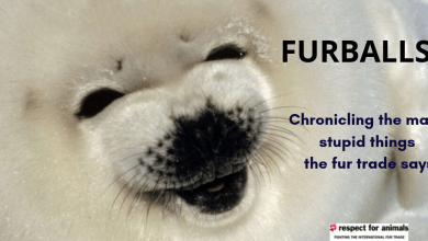 FURBALLS! A guide to the stupid things the fur trade says.