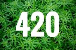 marijuana brands