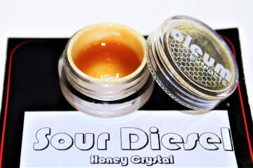 Testing Oleum's Sour Diesel Honey Crystal | Cannabis Review