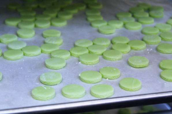 Sour Apple Weed Tarts