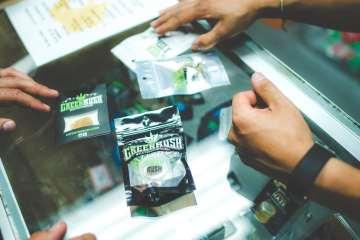 GreenRush Strain Exclusivity Puts Them In High Demand